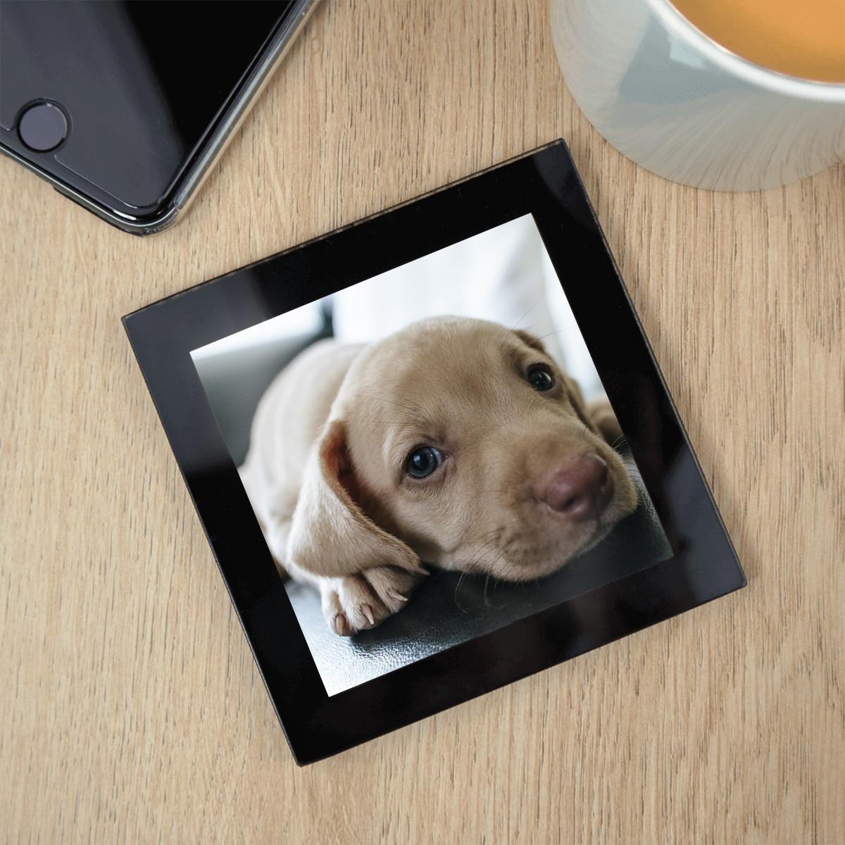 personalised glass pet photo coaster