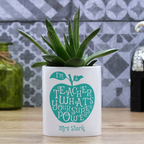 personalised Teacher Superpower Plant Pot
