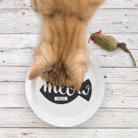 Personalised meow plate