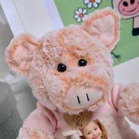 personalised Pig Photo Bear