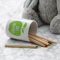 personalised teacher apple pen pot